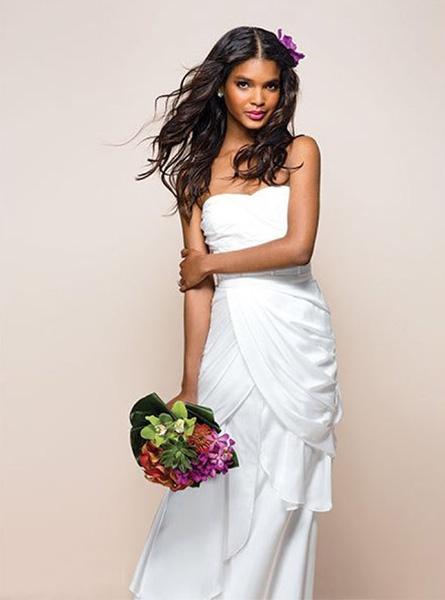 Strijelac vjenčanica