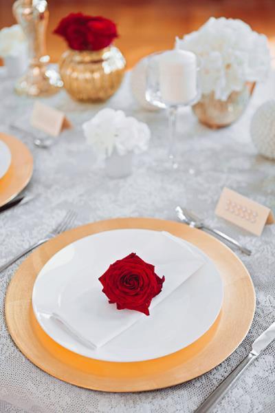 Prestige Line organizacija vjenčanja
