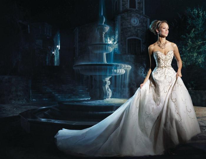 Disney vjenčanica - Pepeljuga