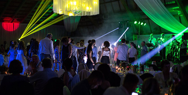 Gosti na svadbi